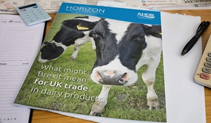 What might Brexit mean for UK trade in dairy products? - 17 January 2017