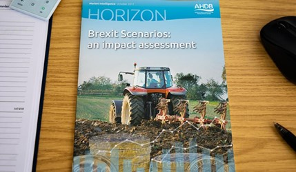 Brexit Scenarios: an impact assessment - 11 October 2017