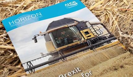 Post-Brexit prospects for UK grains - 14 June 2017