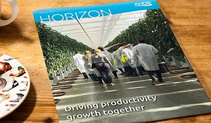 Driving productivity growth together - 2 January 2018