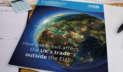 How will Brexit affect the UK's trade outside the EU - 20 July 2016