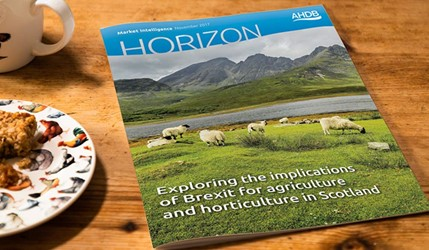 Exploring the implications of Brexit for agriculture and horticulture in Scotland - 15 November 2017