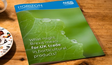 What might Brexit mean for UK trade in horticultural products? - 17 January 2017